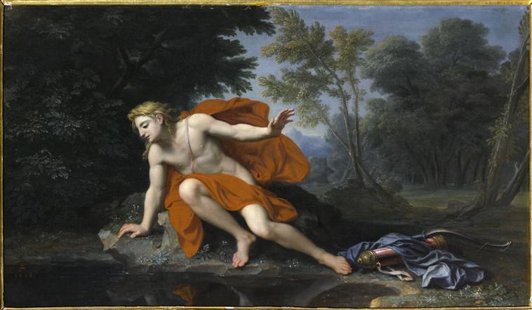 Narcisse 10-517247