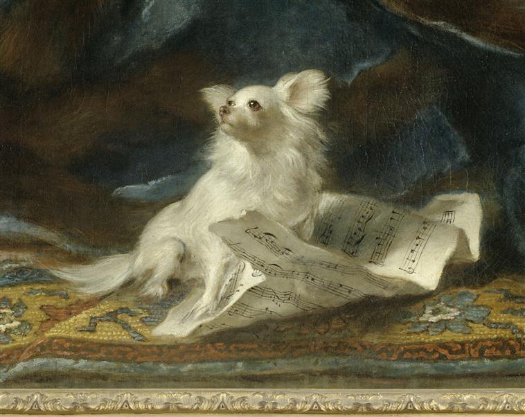 Exposition Les animaux de Versailles 00-008721