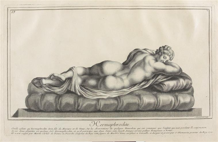 Hermaphrodite ou la confusion des genres  03-014035