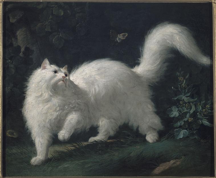 Exposition Les animaux du roi à Versailles - Page 2 00-008906